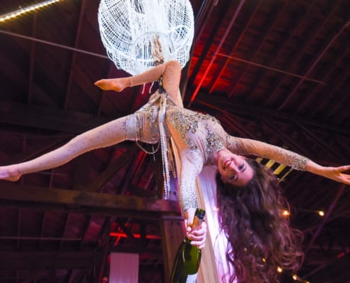 Entertainment Holiday Paty Aerial Silk Dancer Performance