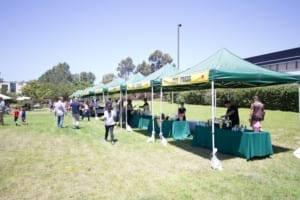 Fun Food Zone for Catered Company Carnival in San Diego